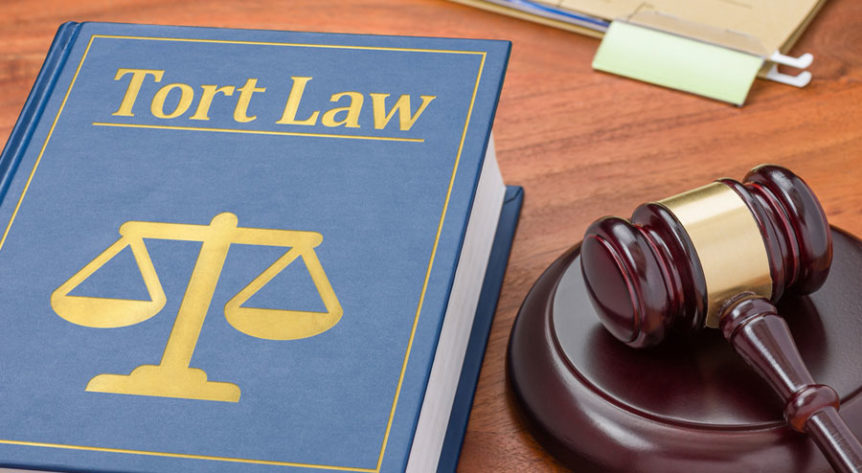The Basics of Tort Law