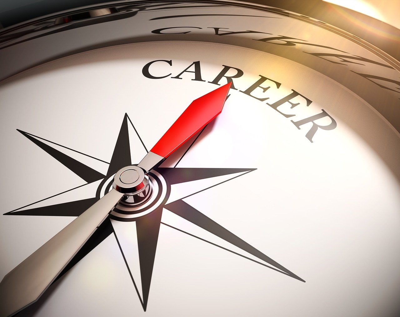 career direction compass